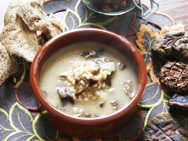 Zupa grzybowa – z suszonymi grzybami
